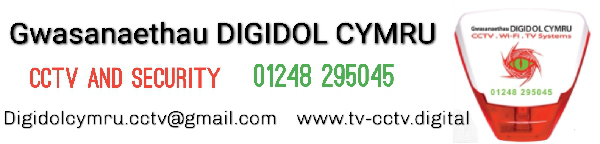 Digital Services Wales